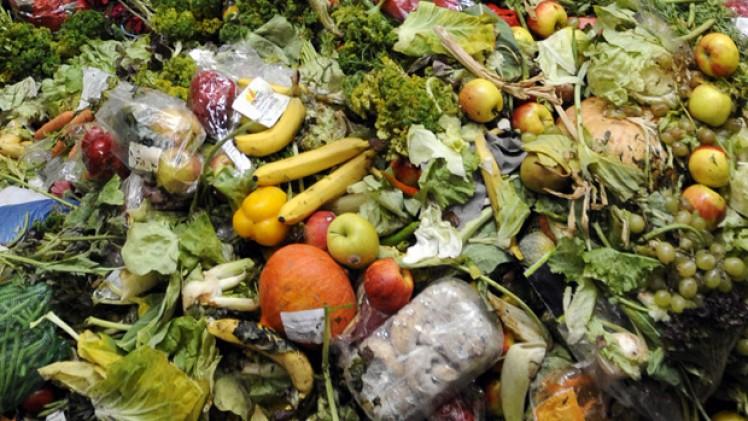 No-food waste game